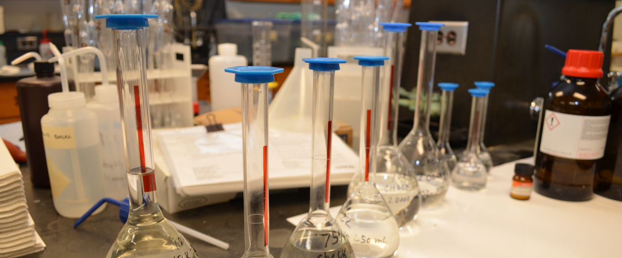 Capped Erlenmeyer flasks in lab